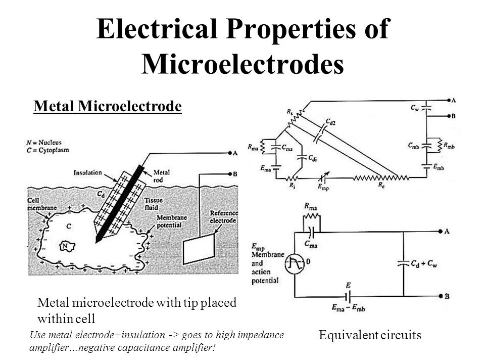 Electrical Properties of Microelectrodes Metal microelectrode with tip placed within cell Equivalent circuits Metal Microelectrode Use metal electrode