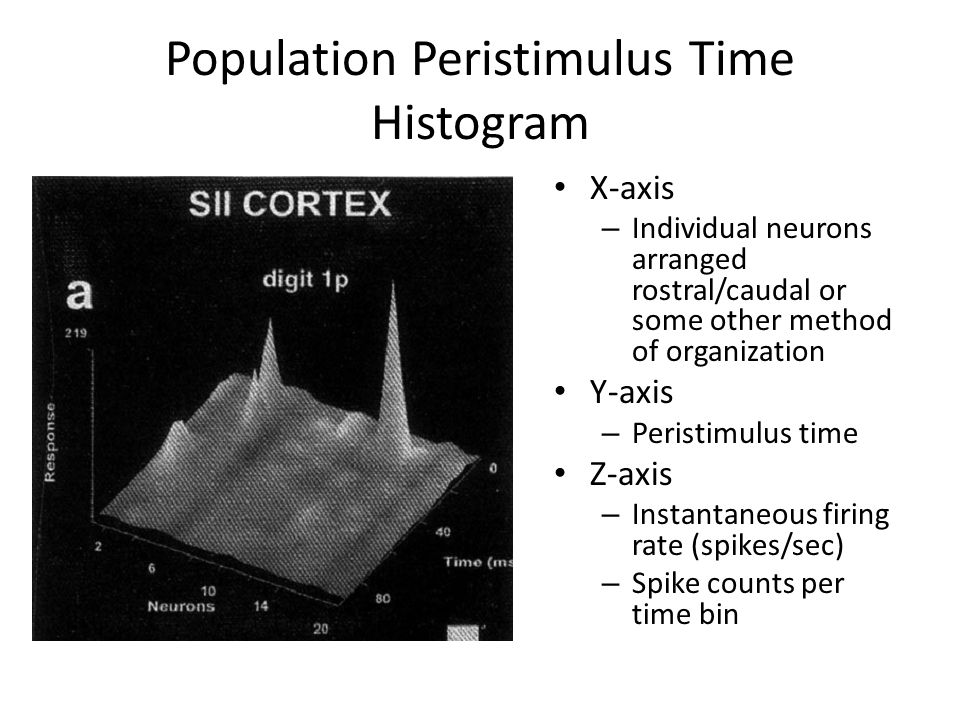 Population Peristimulus Time Histogram X-axis – Individual neurons arranged rostral/caudal or some other method of organization Y-axis – Peristimulus