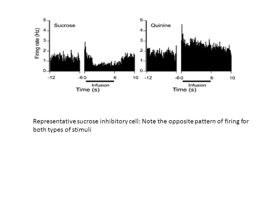 Representative sucrose inhibitory cell: Note the opposite pattern of firing for both types of stimuli