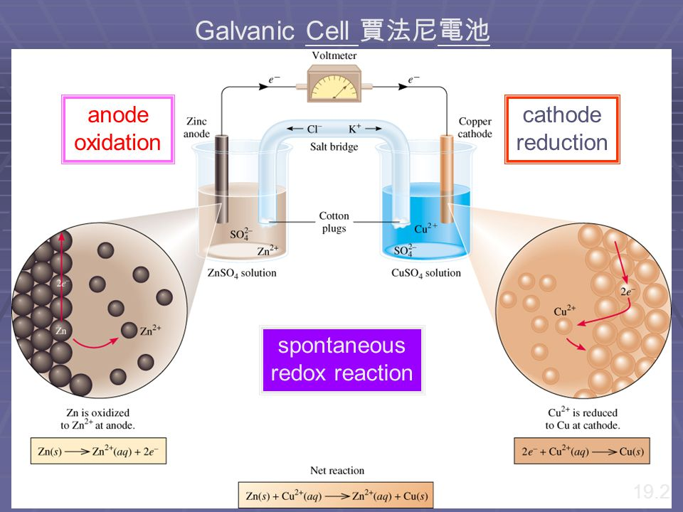 Chapter18 p 495 Figure 18-2 (a)A galvanic cell at open circuit;