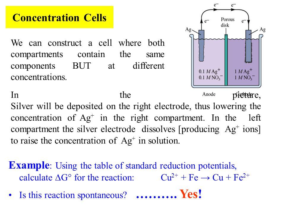 Concentration Cells We can construct a cell where both compartments contain the same components BUT at different concentrations.