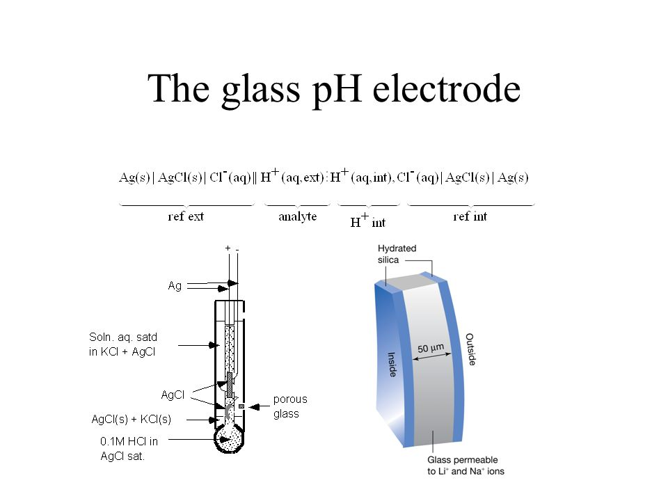 The glass pH electrode