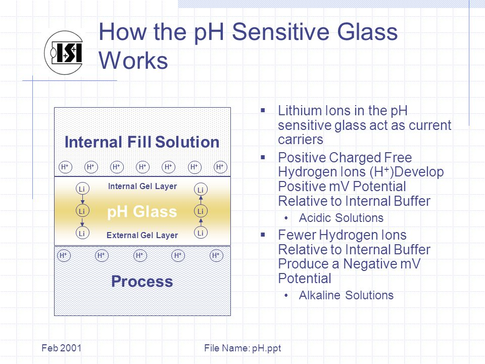 File Name: pH.pptFeb 2001 Process Internal Fill Solution How the pH Sensitive Glass Works  Lithium Ions in the pH sensitive glass act as current carriers  Positive Charged Free Hydrogen Ions (H + )Develop Positive mV Potential Relative to Internal Buffer Acidic Solutions  Fewer Hydrogen Ions Relative to Internal Buffer Produce a Negative mV Potential Alkaline Solutions H+H+ H+H+ H+H+ H+H+ H+H+ H+H+ pH Glass External Gel Layer Internal Gel Layer H+H+ H+H+ H+H+ H+H+ H+H+ H+H+ Li