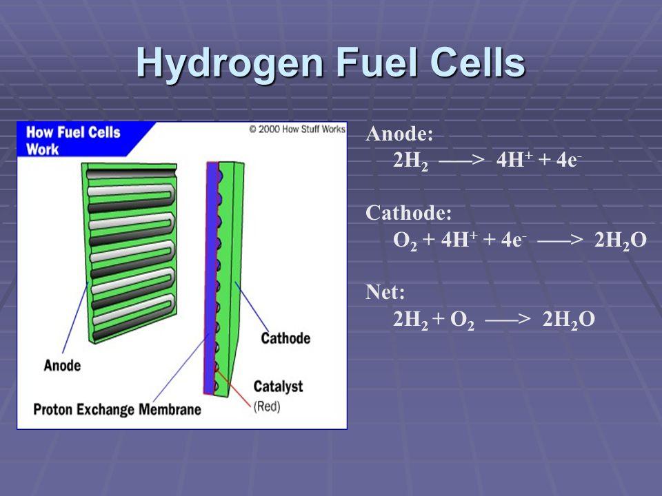 Hydrogen Fuel Cells Anode: 2H 2 –––> 4H + + 4e - Cathode: O 2 + 4H + + 4e - –––> 2H 2 O Net: 2H 2 + O 2 –––> 2H 2 O