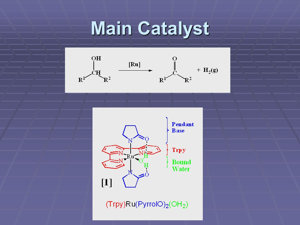 Main Catalyst