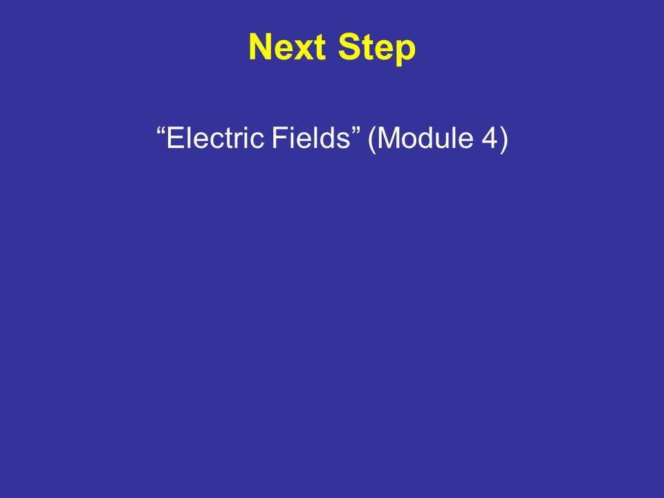 Next Step Electric Fields (Module 4)