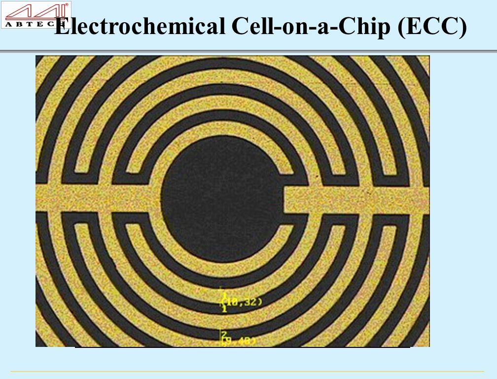 XX = 05, 10, 15, 20  m ECC IME XX04, Au, Pt or ITO 2 cm 1 cm C1 C2 A B C D E F G