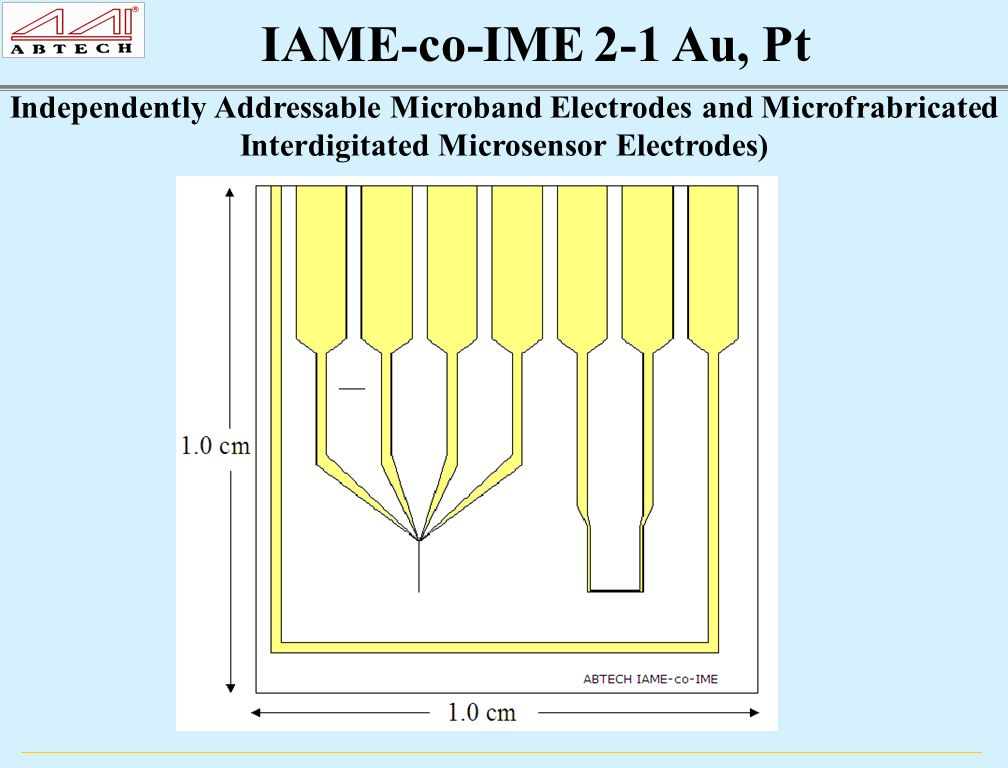 IAME-co-IME 2-1 Au, Pt Independently Addressable Microband Electrodes and Microfrabricated Interdigitated Microsensor Electrodes)