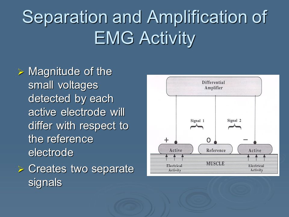 Separation and Amplification of EMG Activity  2 active electrodes  1 reference electrode  Active electrodes pick up electrical activity from motor units firing in the muscles beneath the electrodes