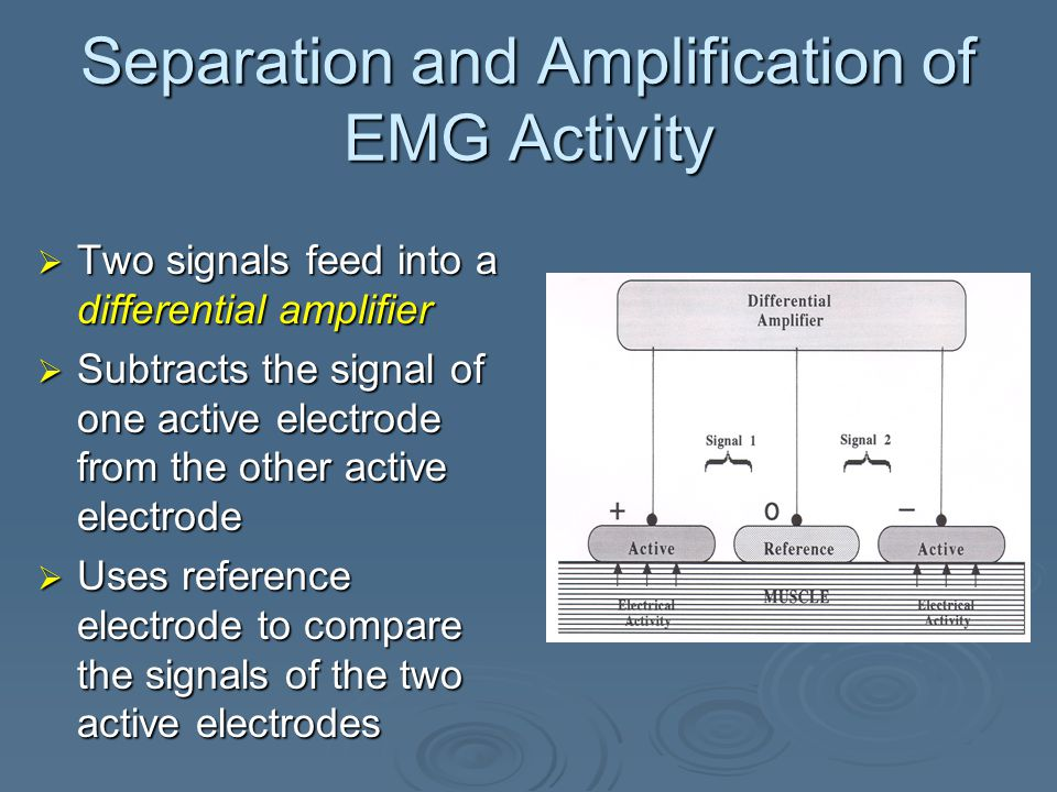 Separation and Amplification of EMG Activity  Magnitude of the small voltages detected by each active electrode will differ with respect to the reference electrode  Creates two separate signals