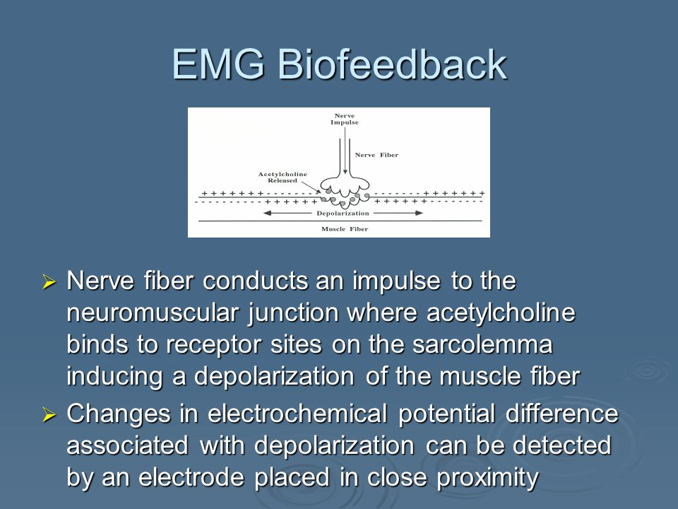 EMG Biofeedback  Nerve fiber conducts an impulse to the neuromuscular junction where acetylcholine binds to receptor sites on the sarcolemma inducing a depolarization of the muscle fiber  Changes in electrochemical potential difference associated with depolarization can be detected by an electrode placed in close proximity