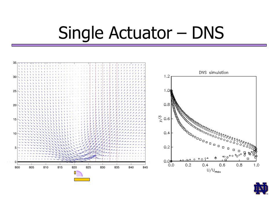 Single Actuator – DNS