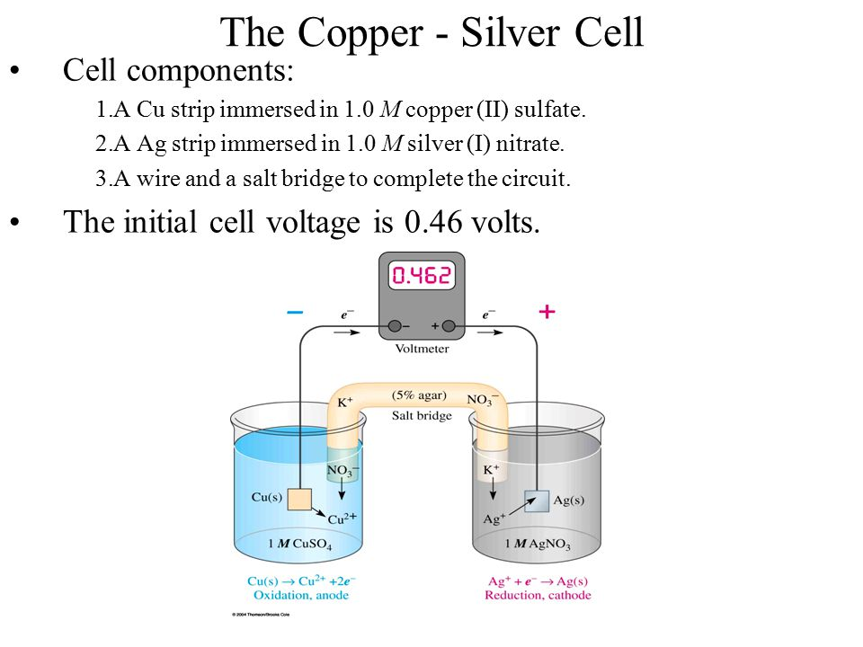 The Copper - Silver Cell Cell components: 1.A Cu strip immersed in 1.0 M copper (II) sulfate. 2.A Ag strip immersed in 1.0 M silver (I) nitrate. 3.A w