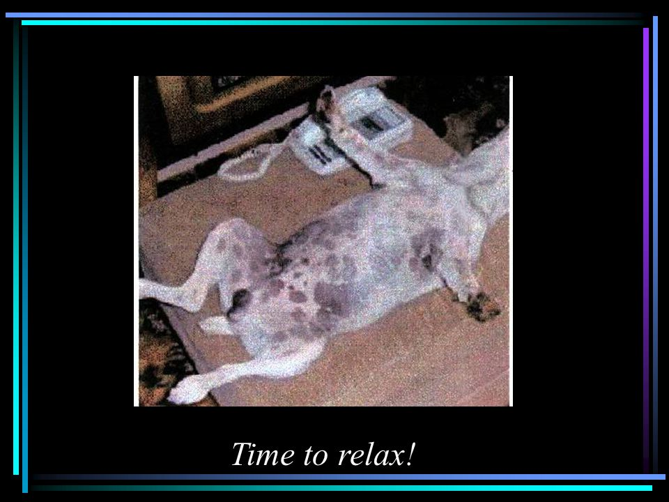 Time to relax!