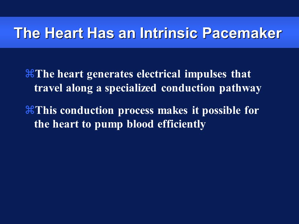 zThe heart generates electrical impulses that travel along a specialized conduction pathway zThis conduction process makes it possible for the heart t