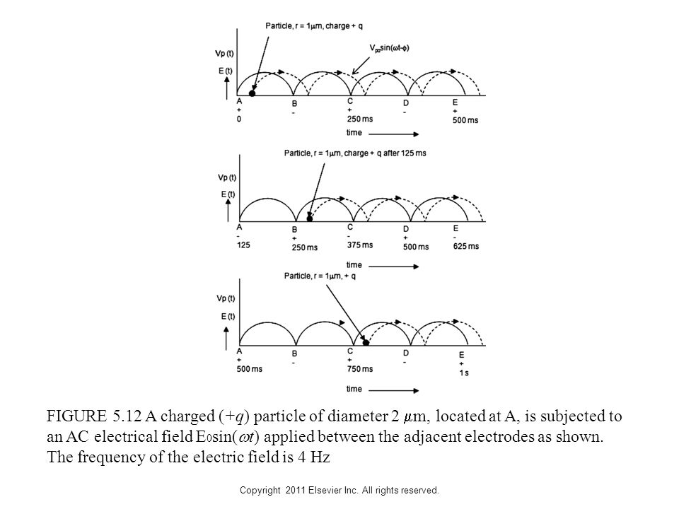 Copyright 2011 Elsevier Inc. All rights reserved. FIGURE 5.12 A charged (+q) particle of diameter 2  m, located at A, is subjected to an AC electrica