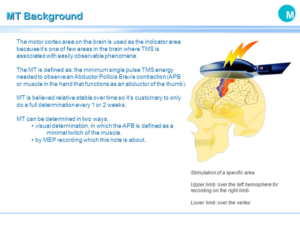 MT Background When performing Transcranial Magnetic Stimulation (TMS) the relative intensity or strength of stimulation is often referred to as % of Motor Threshold (MT).