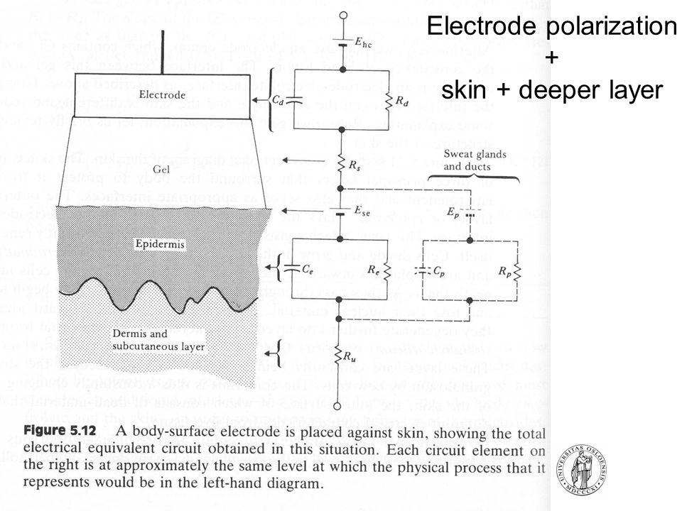 Electrode polarization + skin + deeper layer
