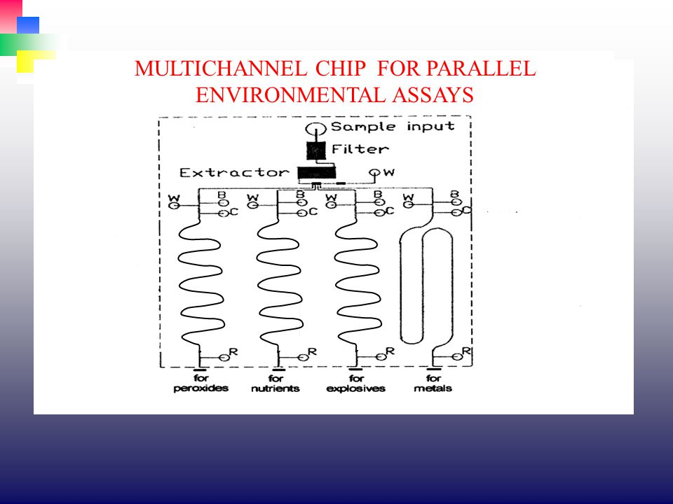 MULTICHANNEL CHIP FOR PARALLEL ENVIRONMENTAL ASSAYS