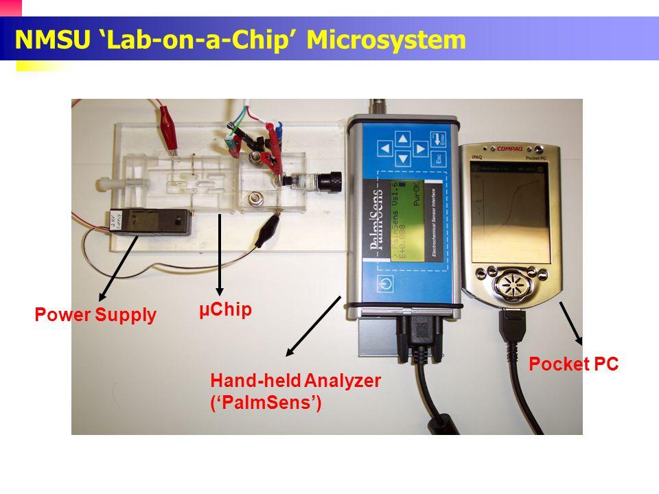 Carbon Nanotube/Copper Composite Electrode for the Detection of Amino Acids Arg His Leu Analyst, 2004