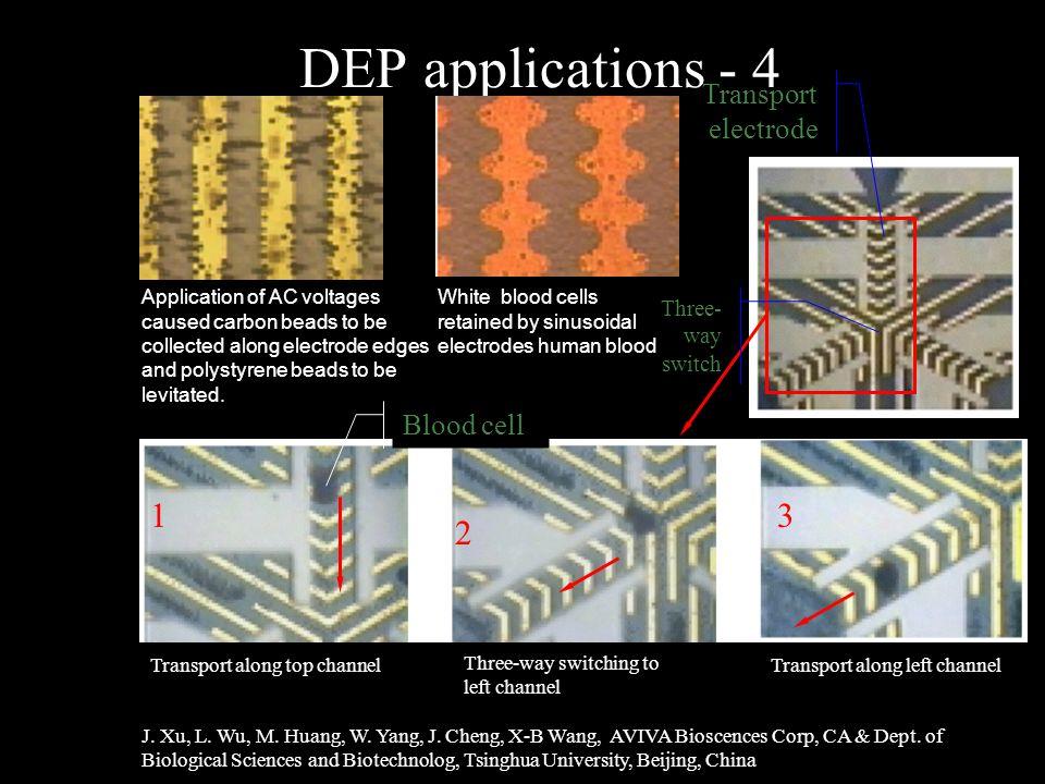 DEP applications - 4 J. Xu, L. Wu, M. Huang, W.