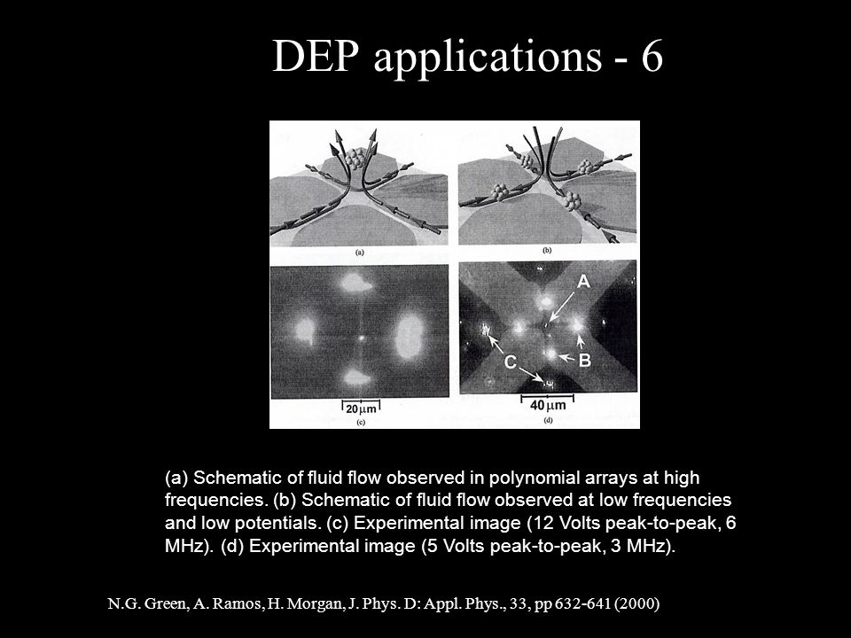DEP applications - 6 (a) Schematic of fluid flow observed in polynomial arrays at high frequencies.