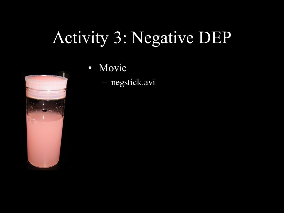 Activity 3: Negative DEP Movie –negstick.avi