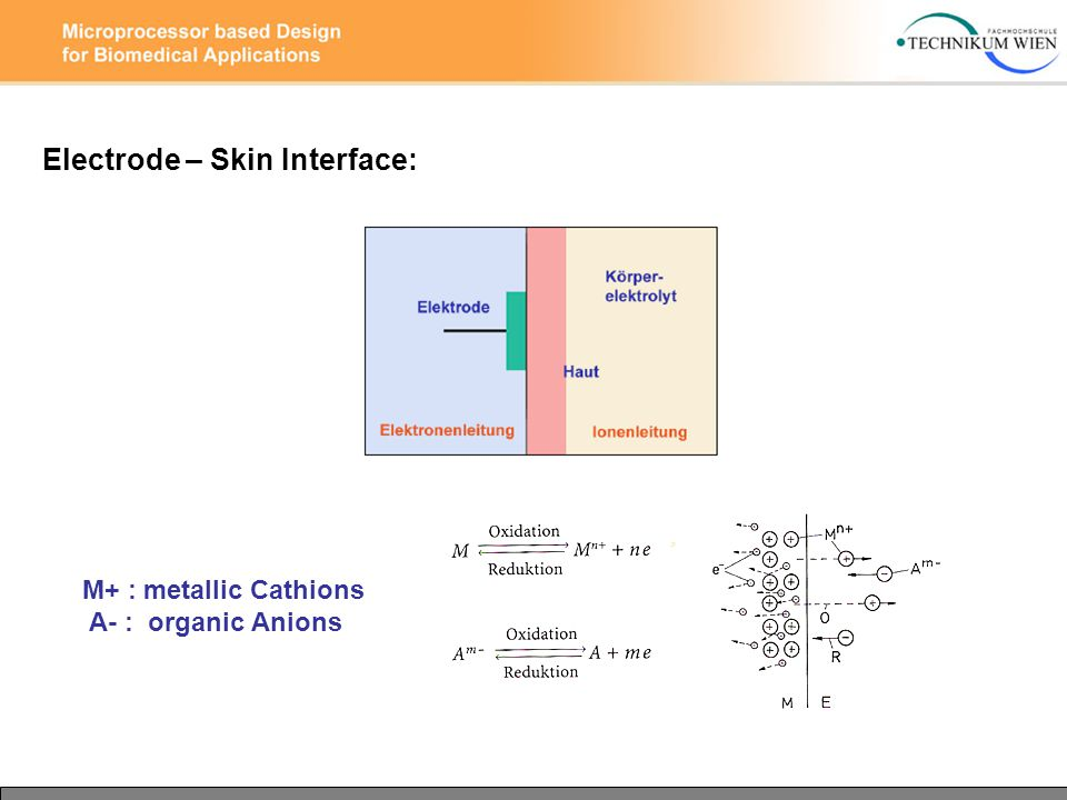 Electrode – Skin Interface: M+ : metallic Cathions A- : organic Anions