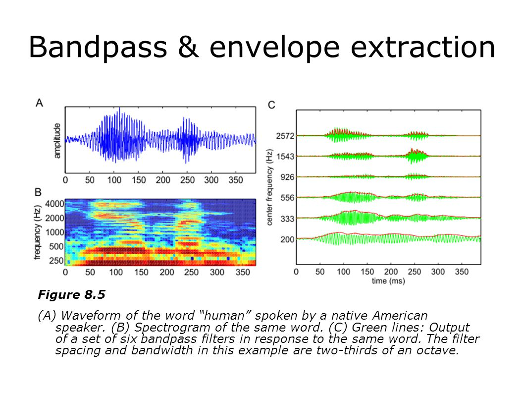 Encoding Sounds for Cochlear Implants: What does the speech processor do