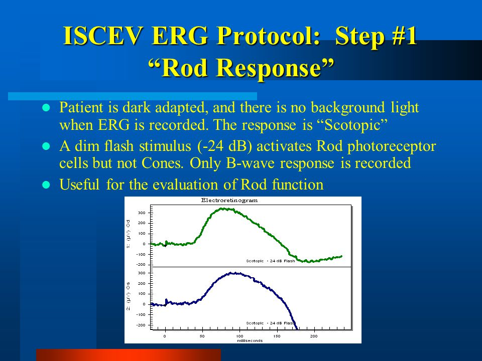 """ISCEV ERG Protocol: Step #1 """"Rod Response"""" Patient is dark adapted, and there is no background light when ERG is recorded. The response is """"Scotopic"""""""