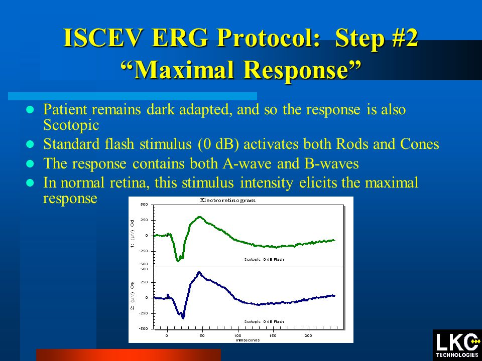 ISCEV ERG Protocol: Step #2 Maximal Response Patient remains dark adapted, and so the response is also Scotopic Standard flash stimulus (0 dB) activates both Rods and Cones The response contains both A-wave and B-waves In normal retina, this stimulus intensity elicits the maximal response