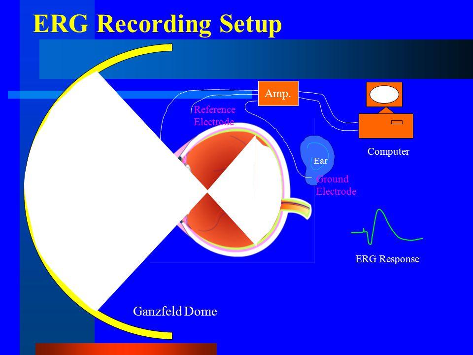 Recording Electrode Amp.