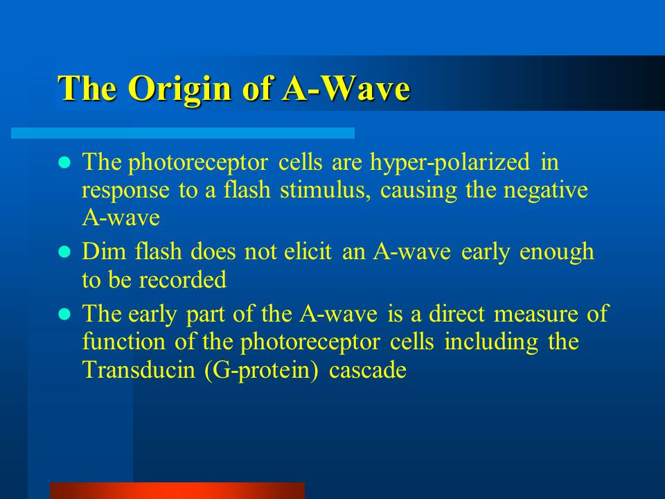 The Origin of A-Wave The photoreceptor cells are hyper-polarized in response to a flash stimulus, causing the negative A-wave Dim flash does not elicit an A-wave early enough to be recorded The early part of the A-wave is a direct measure of function of the photoreceptor cells including the Transducin (G-protein) cascade