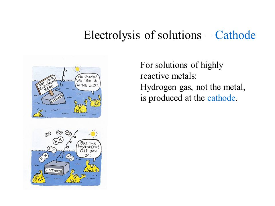 Electrolysis of solutions – Cathode For solutions of highly reactive metals: Hydrogen gas, not the metal, is produced at the cathode.