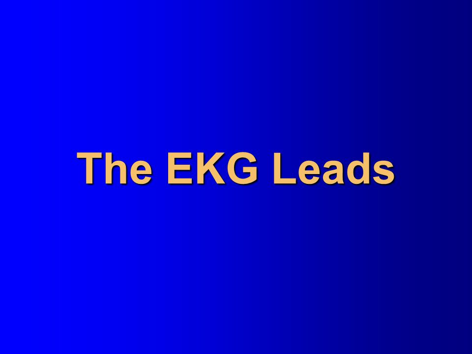 The EKG Leads