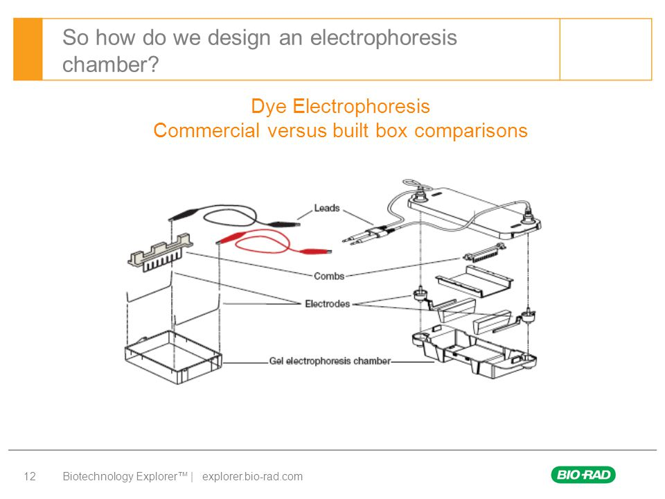 Biotechnology Explorer™ | explorer.bio-rad.com 12 So how do we design an electrophoresis chamber? Dye Electrophoresis Commercial versus built box comp