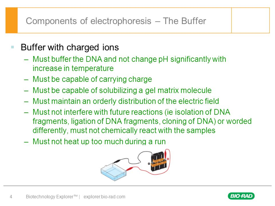 Biotechnology Explorer™ | explorer.bio-rad.com 4 Components of electrophoresis – The Buffer  Buffer with charged ions –Must buffer the DNA and not ch