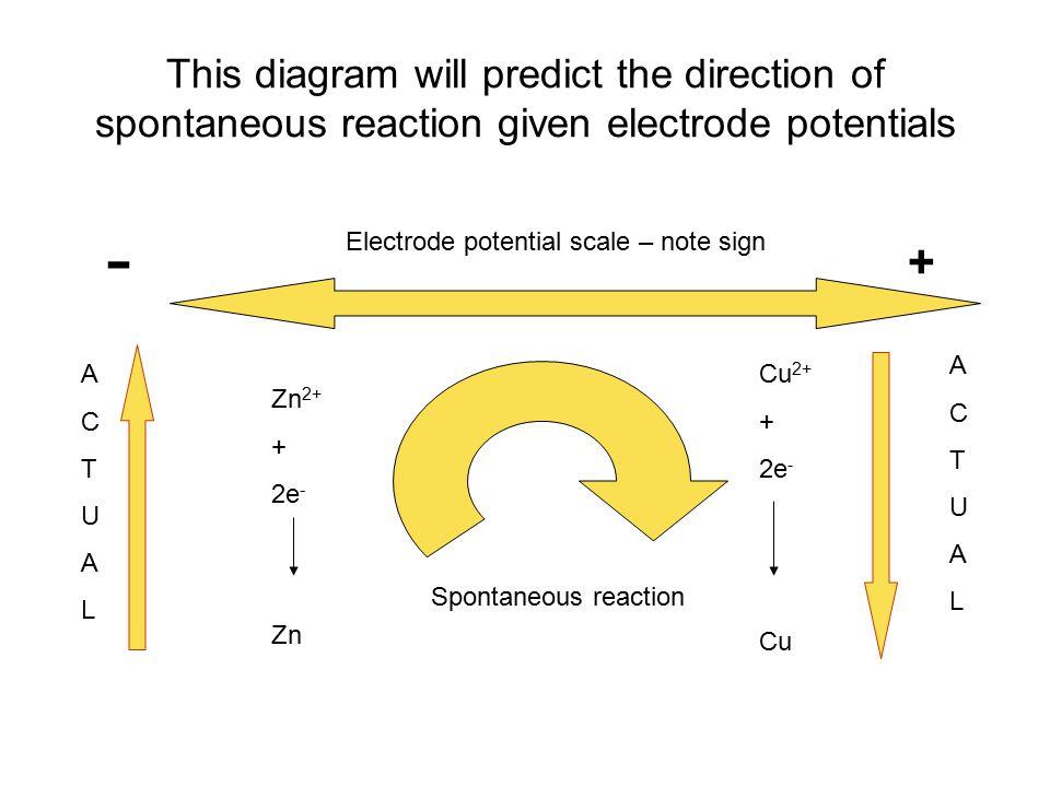 This diagram will predict the direction of spontaneous reaction given electrode potentials - + Cu 2+ + 2e - Cu Zn 2+ + 2e - Zn ACTUALACTUAL ACTUALACTU