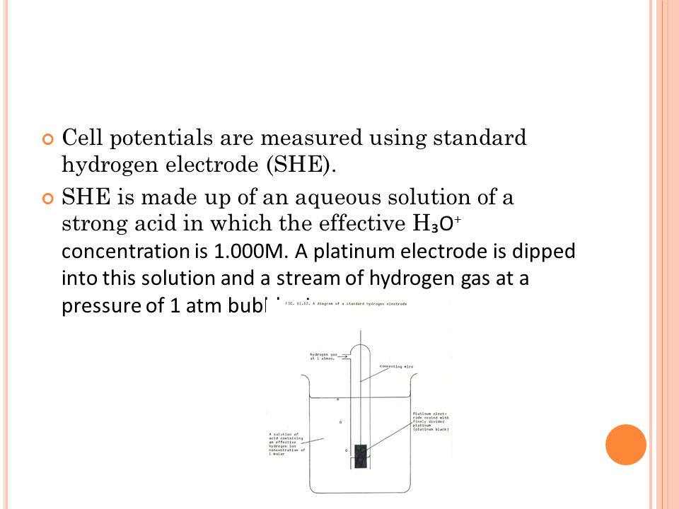 Cell potentials are measured using standard hydrogen electrode (SHE).