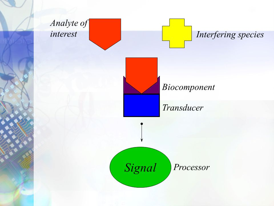 Transducers Electrochemical –Potentiometric –Amperometric –Conductimetric