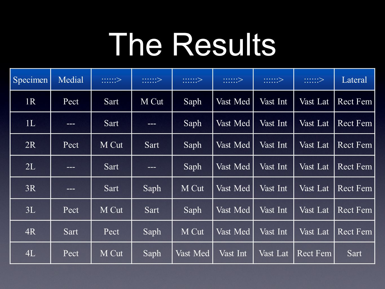 The Results SpecimenMedial::::::> Lateral 1RPectSartM CutSaphVast MedVast IntVast LatRect Fem 1L---Sart---SaphVast MedVast IntVast LatRect Fem 2RPectM CutSartSaphVast MedVast IntVast LatRect Fem 2L---Sart---SaphVast MedVast IntVast LatRect Fem 3R---SartSaphM CutVast MedVast IntVast LatRect Fem 3LPectM CutSartSaphVast MedVast IntVast LatRect Fem 4RSartPectSaphM CutVast MedVast IntVast LatRect Fem 4LPectM CutSaphVast MedVast IntVast LatRect FemSart
