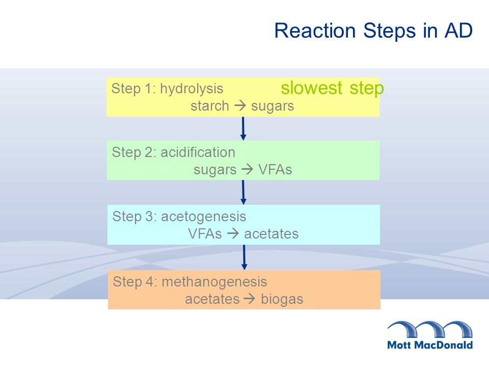 Reaction Steps in AD Step 1:hydrolysis starch  sugars Step 2: acidification sugars  VFAs Step 3: acetogenesis VFAs  acetates Step 4: methanogenesis acetates  biogas slowest step
