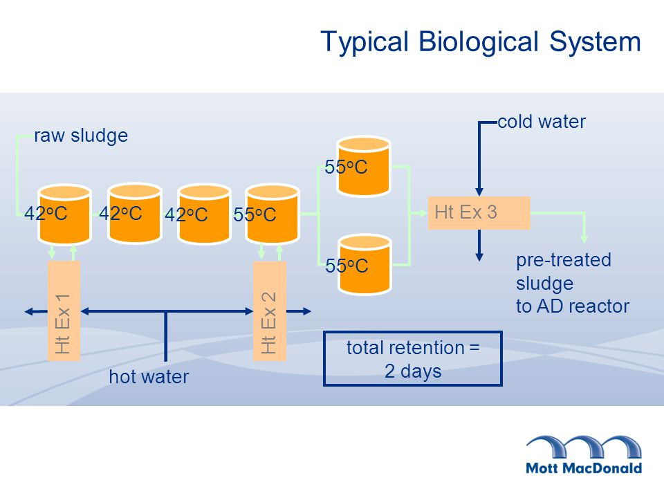 Typical Biological System Ht Ex 1 Ht Ex 2 Ht Ex 3 cold water hot water pre-treated sludge to AD reactor raw sludge 42 o C 55 o C total retention = 2 days