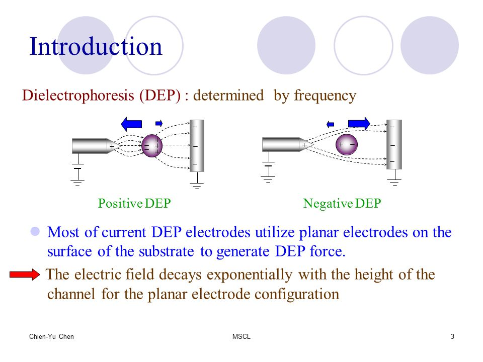 Chien-Yu ChenMSCL4 Design concept 3-D vertical electrode The force balance plot of the cells in the separation zone.