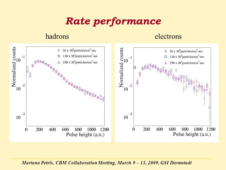 Mariana Petris, CBM Collaboration Meeting, March 9 – 13, 2009, GSI Darmstadt Rate performance hadronselectrons