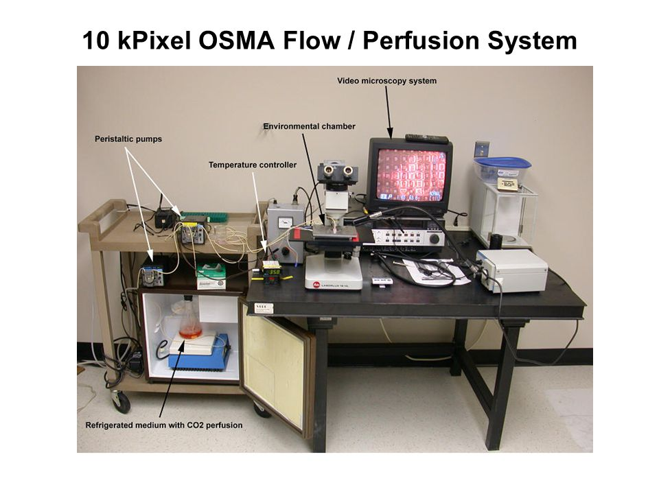 10 kPixel OSMA Flow / Perfusion System