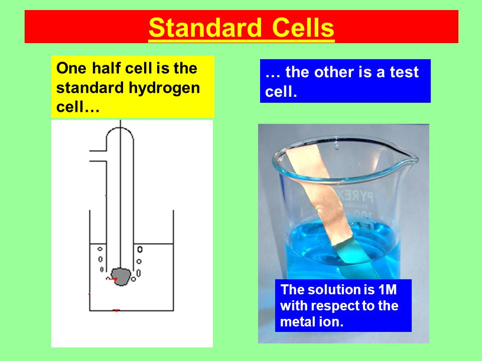 Standard Cells One half cell is the standard hydrogen cell… The solution is 1M with respect to the metal ion.