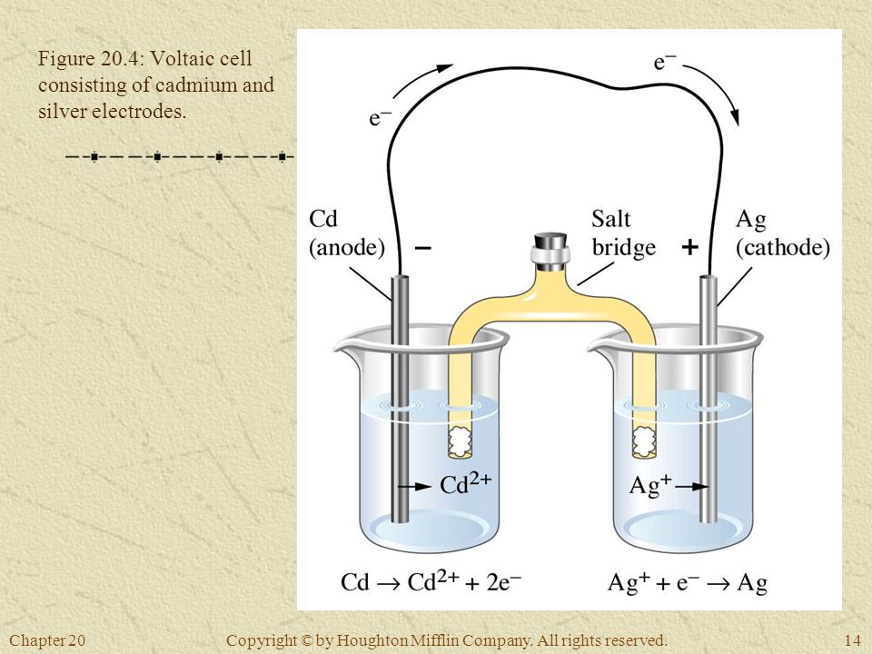 Chapter 2014 Copyright © by Houghton Mifflin Company. All rights reserved. Figure 20.4: Voltaic cell consisting of cadmium and silver electrodes.