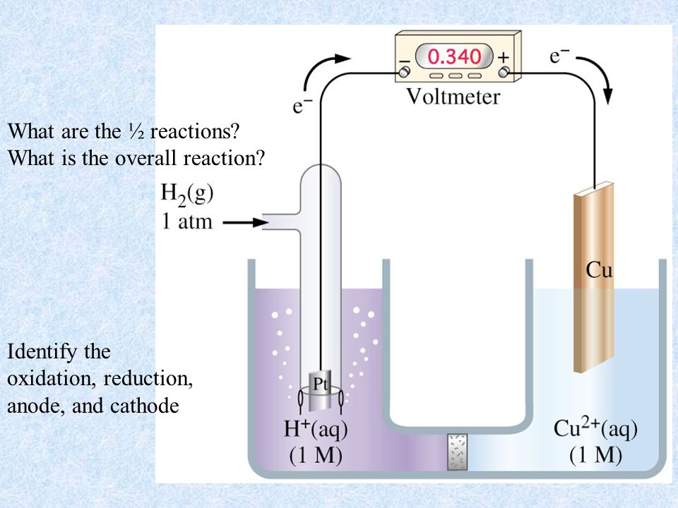 What are the ½ reactions. What is the overall reaction.