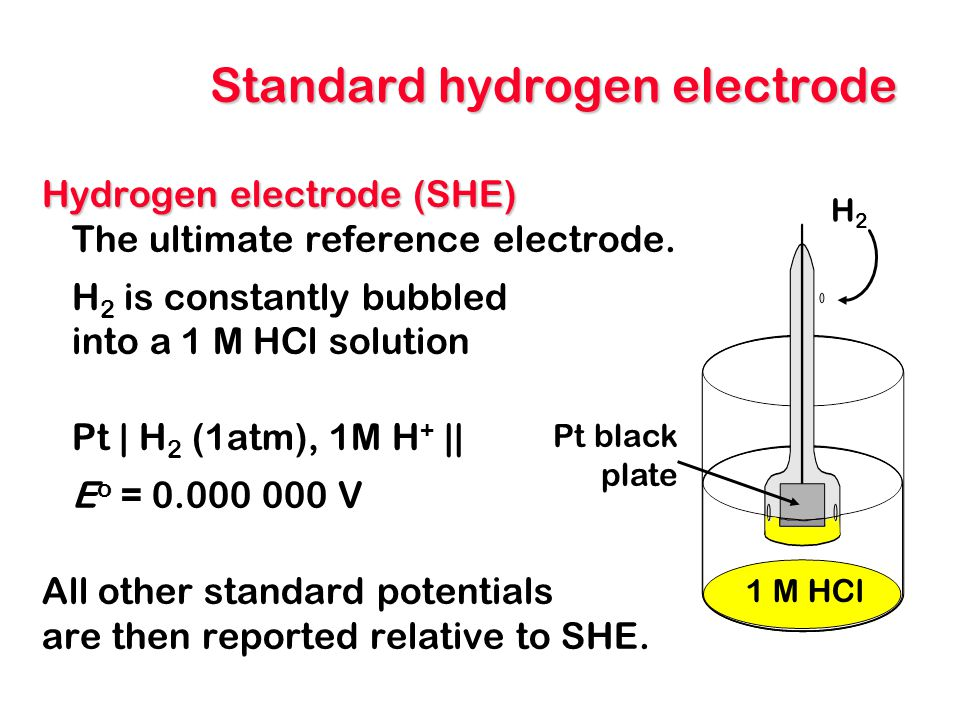 Standard hydrogen electrode Hydrogen electrode (SHE) The ultimate reference electrode. H 2 is constantly bubbled into a 1 M HCl solution Pt | H 2 (1at